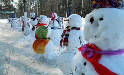 Лучший снеговик